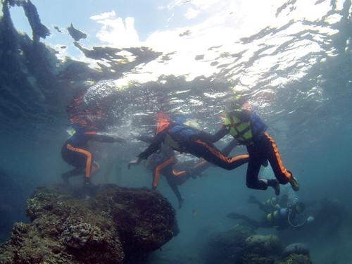 墾丁各海域常見浮潛客踩踏在活珊瑚礁台上(郭兆揚 攝)