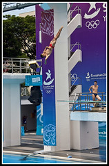 The 2010 Summer Youth Olympics - Men's Diving (3M Springboard) Qualifying Round (daveybaby) Tags: sport singapore diving olympics olympicgames springboard summerolympics mensdiving 40d canon40d youtholympicgames youtholympic 3mspringboard mendiving