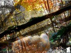 Against Time (_Spring_ Spring) Tags: abstract art digital poetry mixedmedia deep surreal honest facing cruel vesnaperovic vesnaperovicphotography