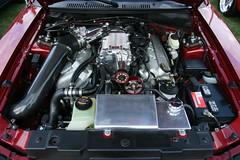 "Q&A: 1998 Ford Mustang ""Diagnostic Question""?"