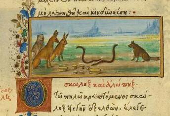 Vulpes et Vermiculus