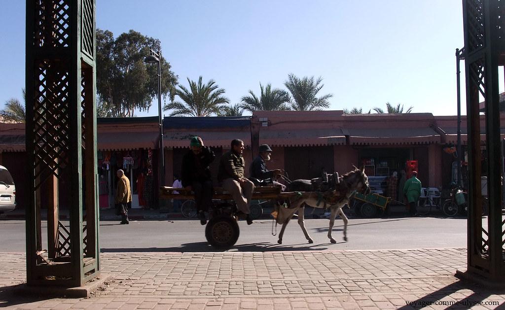 Un âne qui tire une charrette, où se trouvent trois hommes