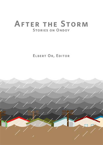 After the Storm - Cover