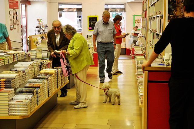 dog in the bookstore