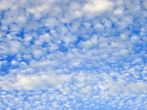 blauer Morgenhimmel