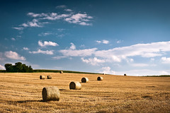 Harvest Time (andywon) Tags: sky nature germany landscape deutschland march wheat harvest straw fields hay bales badenwrttemberg explored gettyimagesgermanyq1