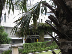 ST VINCENT'S PUBLIC HOSPITAL (RubyGoes) Tags: green hospital crossing lawn sydney entrance australia pedestrian palm ambulance hedge nsw fronds darlinghurst stvincentshospital