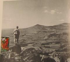Hugh Hughes: Red Bird over fields