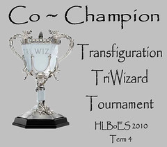 Tri-Wizard Tournament Winner