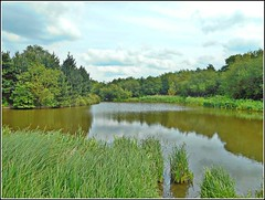 Fishing Lake .. (** Janets Photos **) Tags: uk hull bransholmeponds naturereserves lakes water