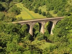 140 Monsale Dale Viaduct (saxonfenken) Tags: 6907bridge 6907 bridge viaduct darbyshire monsaledale green footbridge perpetual pregamesweep 15challengeswinner 15challenges