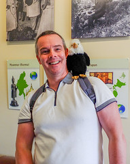 New pal (tubblesnap) Tags: lotherton hall stately home history tubblesnap bald eagle stuffed toy bird