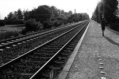 Damn, missed the train (stefankamert) Tags: stefankamert railway line lines train bw baw bnw noir noiretblanc blackandwhite blackwhite monochrome mono fuji fujifilm horizon x100s x100