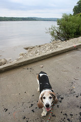 Jake and the Missouri River