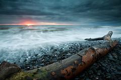 The Great British Summer... (Izzy Standbridge) Tags: sunset beach log llanrhystud supershot platinumphoto natureselegantshots bestofmywinners magicunicornverybest magicunicornmasterpiece