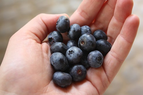 blueberries..my favorite berry
