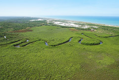 Litoral Norte, Bahia (Anselmo Garrido) Tags: sea river landscape stock bahia litoral aérea litoralnorte flickrstock