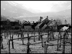 Montecrestese, veduta sull'Ossola (emilius da atlantide) Tags: winter panorama mountains alps landscape brina piemonte inverno alpi montagna piedmont vigneto ossola emilius montecrestese alpilepontine