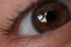 IMG_0965 (springday) Tags: brown macro reflection eye canon eyelashes 60mm dlsr springday dayspring 40d wowiekazowie