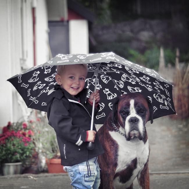 det regnar!