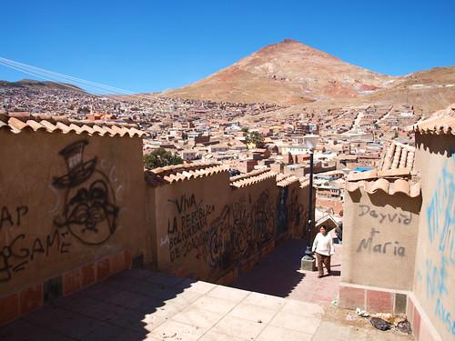 Arco de Cobija y zona indígena (2)