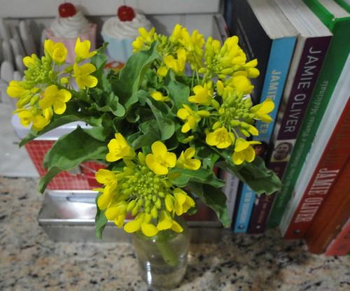 Flor de couve chinesa