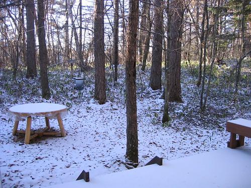山荘庭の新雪 07.11.19 by Poran111