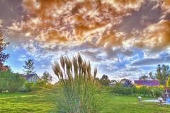 Coucher de soleil  Duisans ( Hubrouz) Tags: france soleil soe hdr pampa photomatix cotcmostinteresting duisans hubrouz