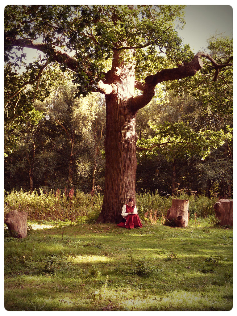 Herstmonceux Medieval Festival ~ maiden under a tree