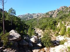 Entre la vasque du Finicione et la confluence Quercitella : terrain d'envol de l'aigle du Finicione