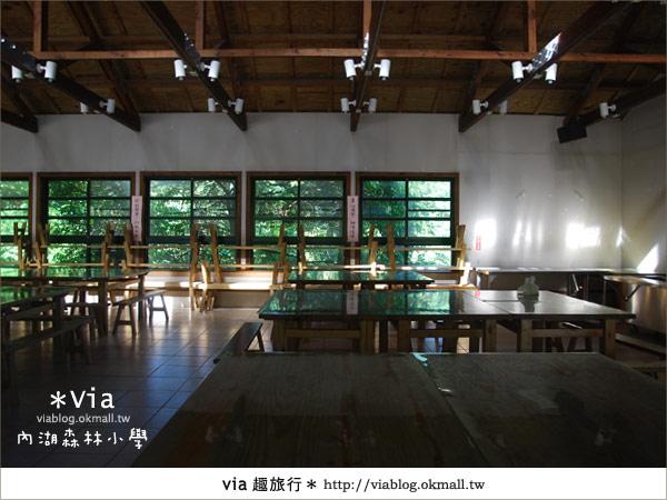 【溪頭一日遊】森林中的夢幻校園~內湖森林小學28