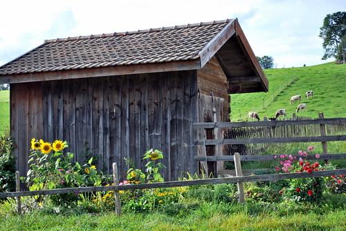 cabane à Muriaux
