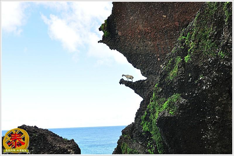 蘭嶼day1-04-騎車隨手拍 (6)