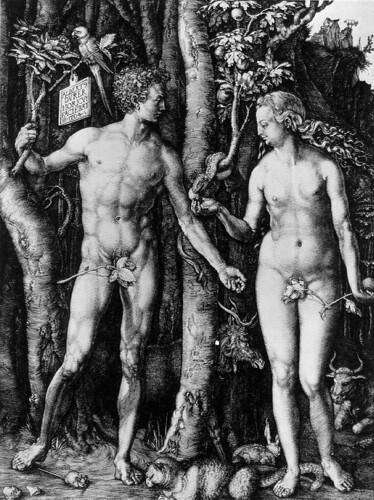 Adam and Eve, Albrecht Dürer, Engraving