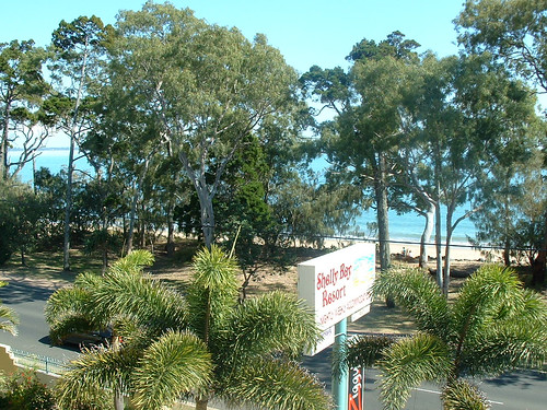 Shelly Bay Resort