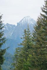 Ramsberglift (Evgeny Drokov) Tags: 2010 alps sonyalpha700 tirol mountains relaxation september tourism travel zillertal австрия альпы тироль циллерталь горы долина красота отдых природа путешествия сентябрь склоны туризм nature austria fun àâñòðèÿ àëüïû òèðîëü öèëëåðòàëü ãîðû äîëèíà êðàñîòà îòäûõ ïðèðîäà ïóòåøåñòâèÿ ñåíòÿáðü ñêëîíû òóðèçì ramsauimzillertal at
