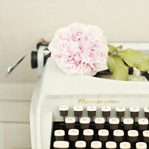 typewriter, rose, pink, beautiful