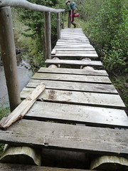 Missing Boards (anikarenina) Tags: bridge footbridge hiking adirondacks backpacking adk npt cedarriver longdistancehiking northvilleplacidtrail