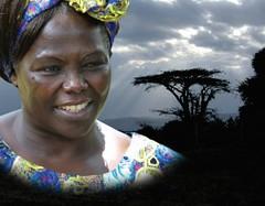 האישה ששתלה עצים
