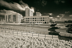 Using filters for b&w I (Ron (Netherlands)) Tags: m8 m82 leidschenveen cv12mm