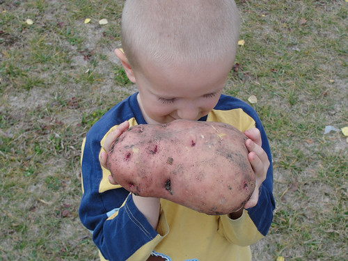 Jabin with Bob the Potato 1