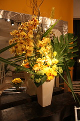 flowers 1 046