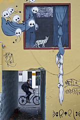 The cyclist and the graffiti (NRG Photos) Tags: streetart window cat graffiti iceland backyard cyclist fenster reykjavik katze hinterhof radfahrer escaped entkommen kuschelmonster strasenkunst furrymonsters