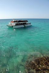 It's A Party (Heidi Zech Photography) Tags: ocean sea water sunshine fun boat jamaica caribbean margaritaville montegobay partyboat heidizech photosbyheidizech