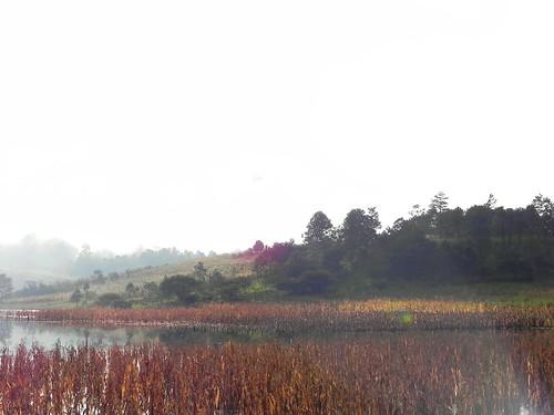 Panorama 5 de 5