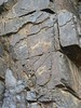 5000 year old petroglyphs (jayselley) Tags: mountain asia desert september mongolia range gobi exodus 2010 mongol bayan bichigtkhad mongolianadventure