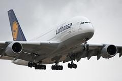 A380 Lufthansa .Fotógrafo: Ricardo Torija
