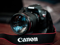 Canon T2i with a Canon EF 135mm L USM (mjkjr) Tags: atlanta canon rebel bokeh availablelight atl dslr ef50mmf18ii newnan telephotolens 2010 135mm selectivefocus 500d 135l cowetacounty potn october7 niftyfif
