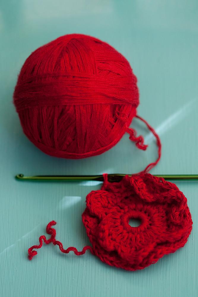 351/365 - Crochet in Progress