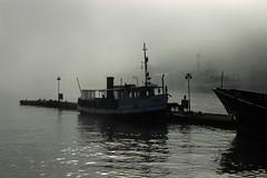 Fog - by *Kicki*